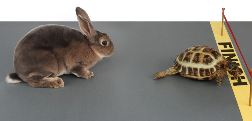 Pressure cooker vs Sous Vide Cooking: Tortoise and the Hare